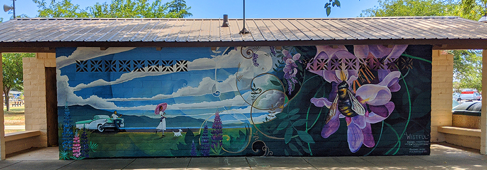 """""""Wistful"""" - Austin Park, Clearlake, CA"""